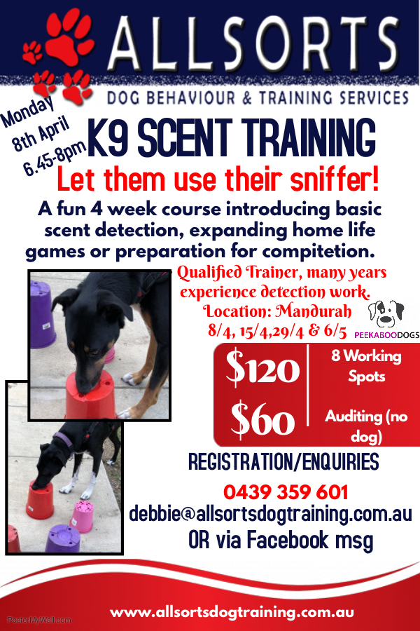 scent course poster
